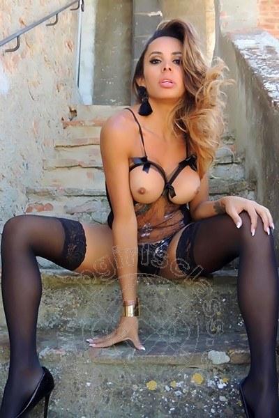 Anita  SIENA 3240424357
